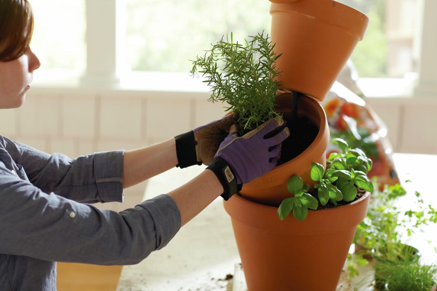 Gardening classes home depot home depot stock photos for Gardening classes near me
