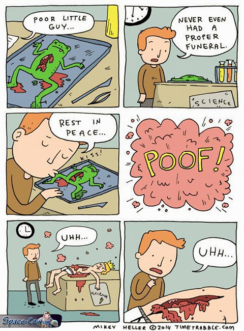 funny comics frog picture