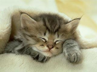 Grandes Beneficios del Dormir Bien
