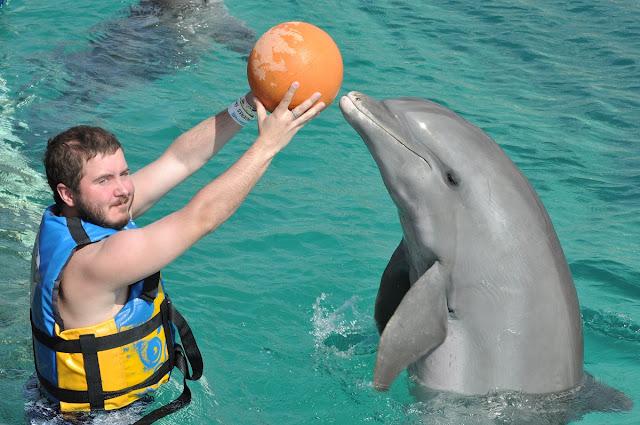 Дельфин-в-Мексике