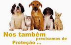 DÊ CARINHO AOS ANIMAIS;