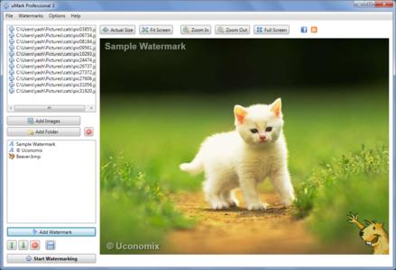 Uconomix uMark Professional 4.0 [32Bit & 64Bit] [Serial]