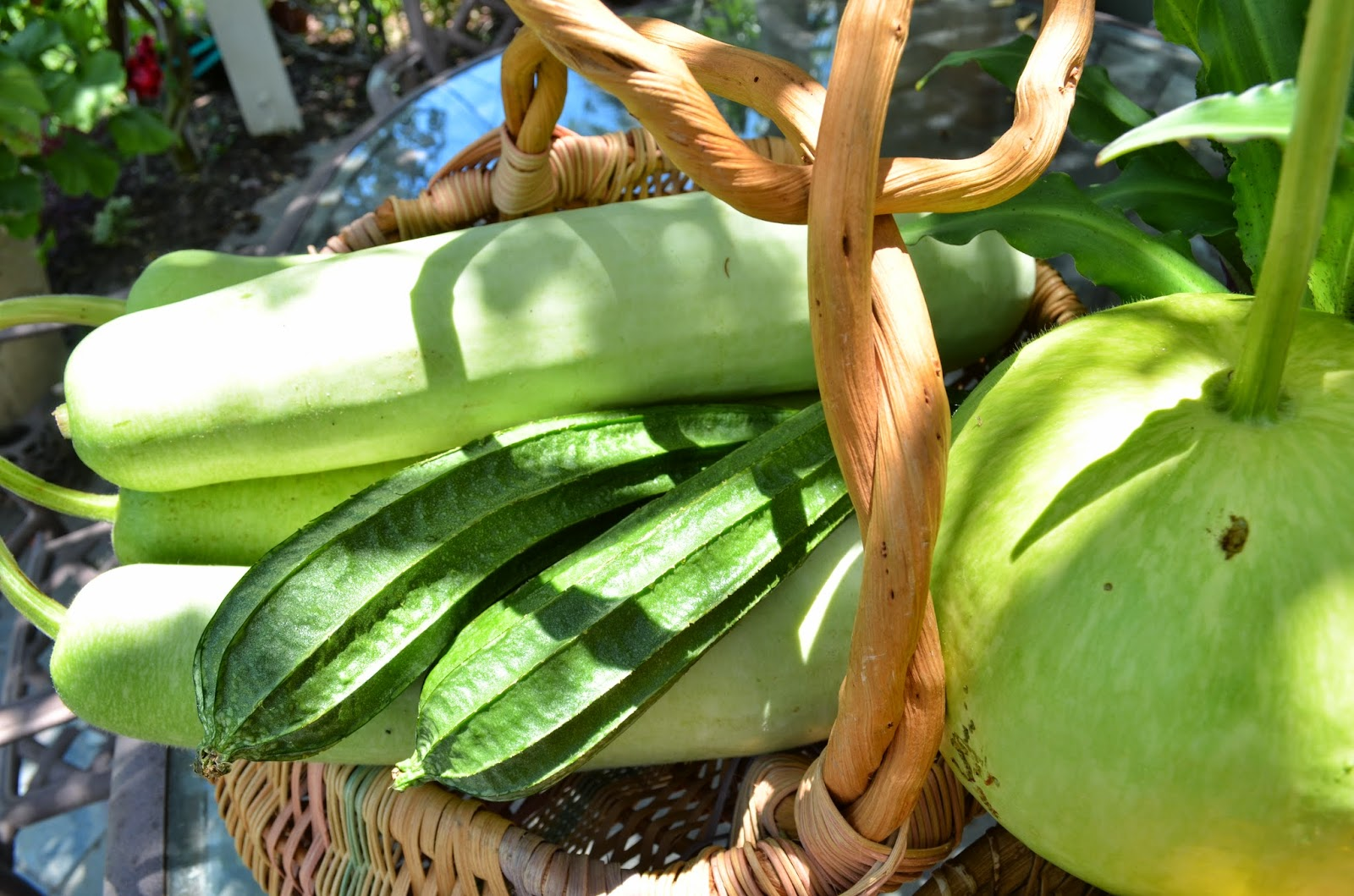 Kitchen Garden Produce Entertaining From An Ethnic Indian Kitchen Colors And Textures Of