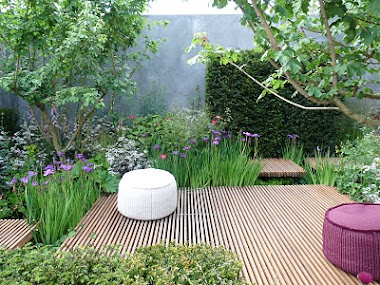 Jane Brockbanks garden 'Nature Ascending' at Chelsea Flower Show 2009