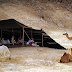علم النجوم في أمثال البدو وأأقوالهم