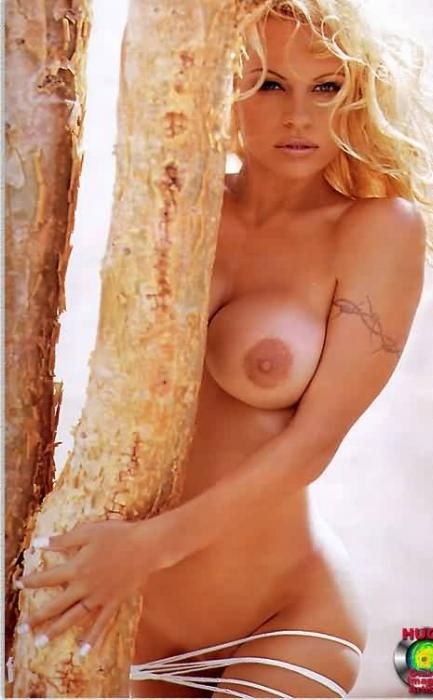 Pamela Anderson Nude Having Se At Beach
