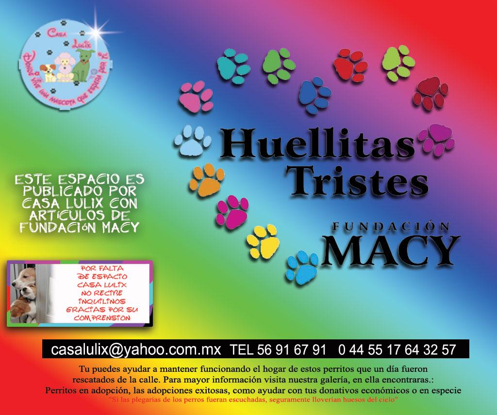 HUELLITAS TRISTES