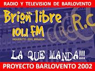 RADIO Y TV  ALTERNATIVA