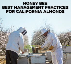 Bees and Farming