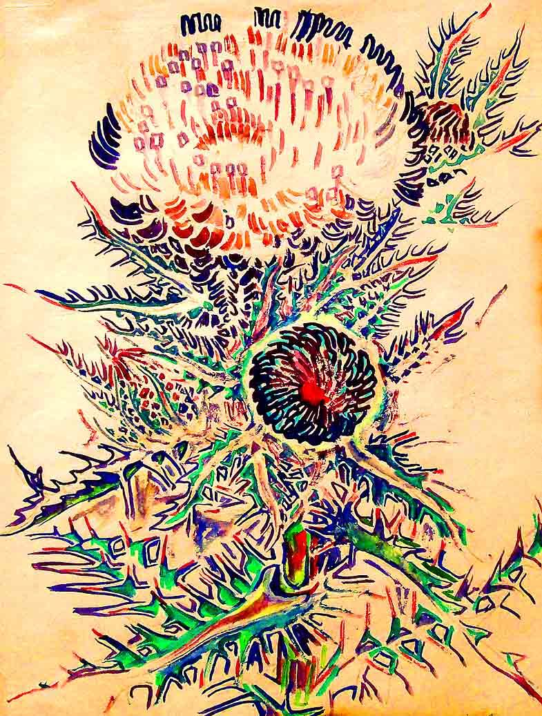 Walter+anderson+prints