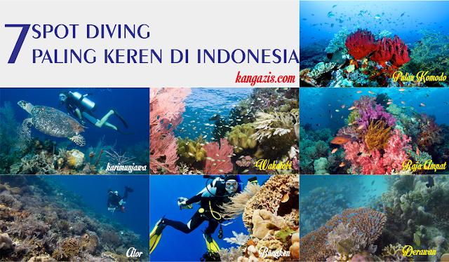 7 Lokasi Diving Paling Keren Di Indonesia