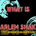 Apa itu Harlem Shake