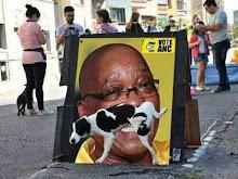 #Zuma must go