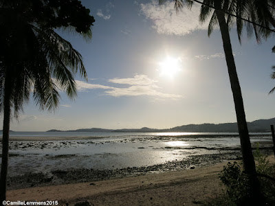 Koh Samui, Thailand daily weather update; 4th July, 2015