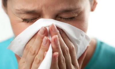 Makanan Ini Bisa Membantu Melawan Flu