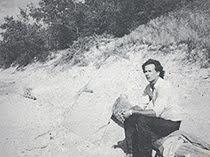 David Detrich, Novelist