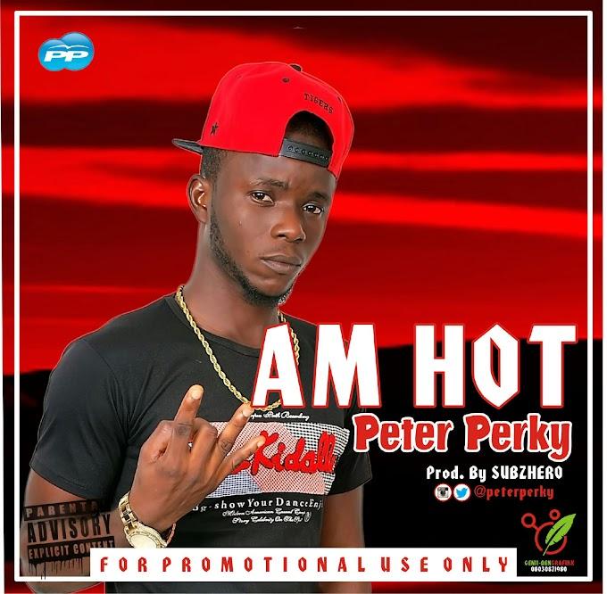 MUSIC: Peter Perky {@peterperky} – Am Hot
