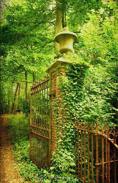 Midnight Farm Through The Garden Gate