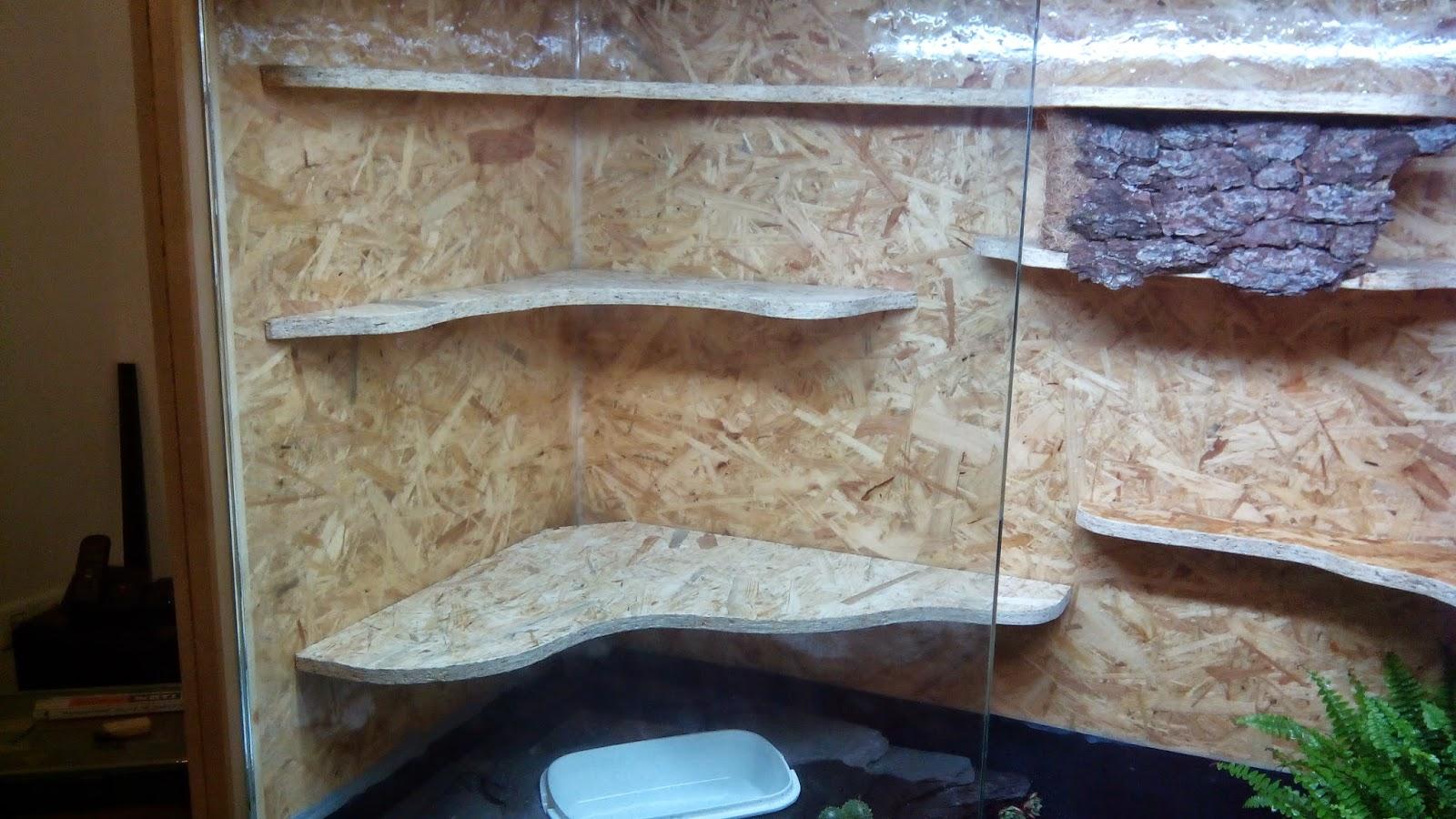 meinblog osb terrarium f r kornnatter bau dokumentation. Black Bedroom Furniture Sets. Home Design Ideas