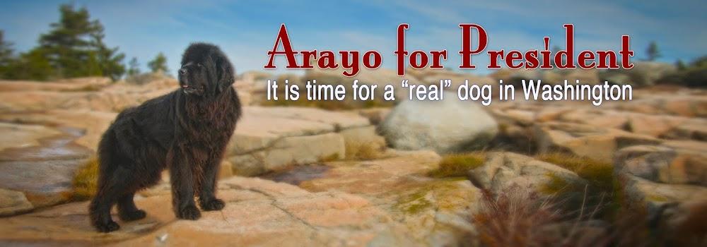 Arayo For President