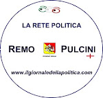 RETE REMO PULCINI