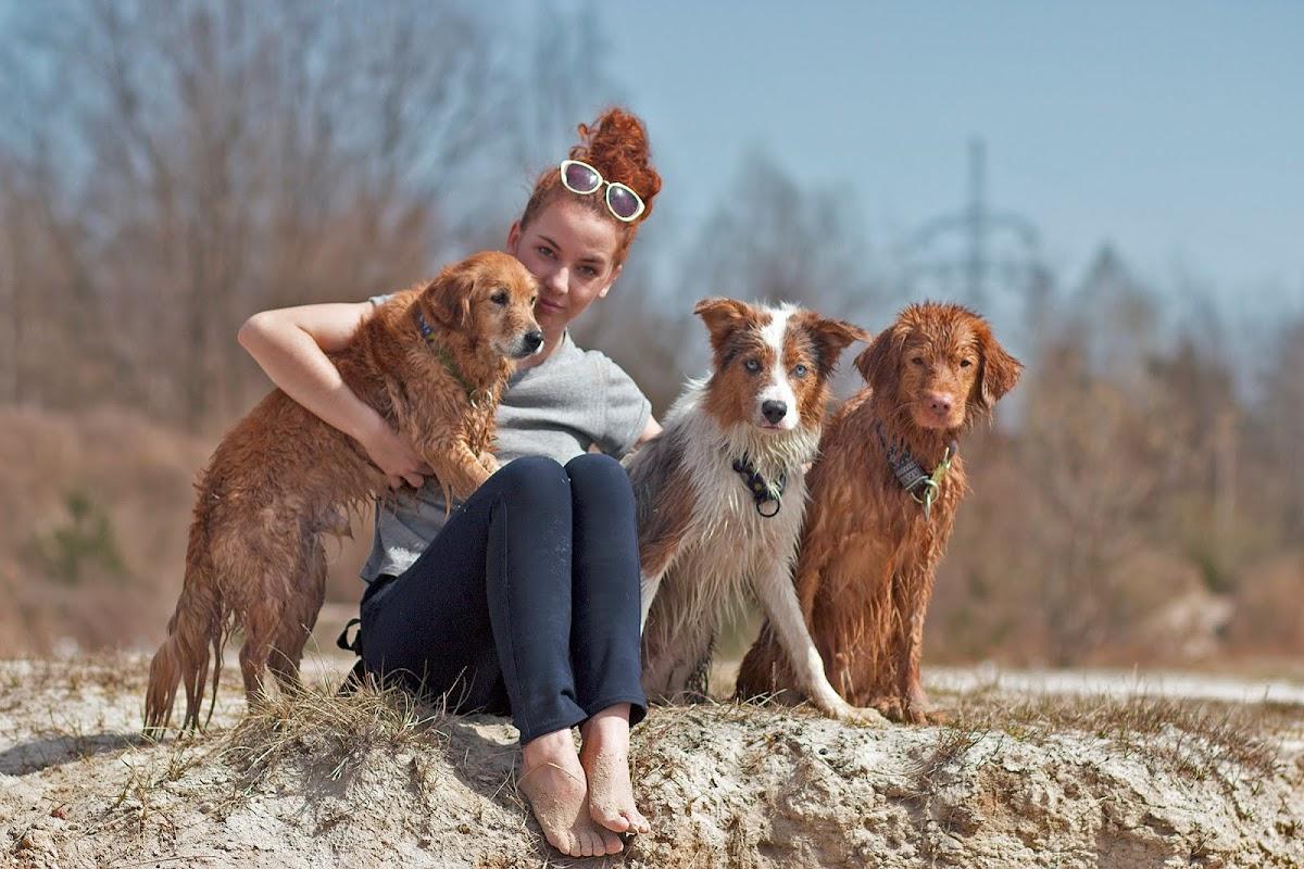 Z rudymi psami przez świat