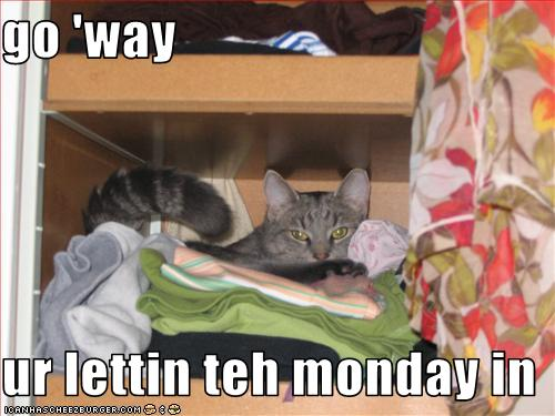 funny-pictures-cat-says-you-are-letting-the-monday-in-a-c-tattoodonkey.com+DONE.jpg