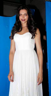 Bollywood Celebs at Finding Fanny Fernandes Movie Completion Bash Event
