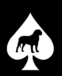 DOG OF SPADES