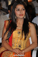 hot, Bhumika, Chawla, cute, Churidhar, stills, orange, salwar, kameez, desi, indian, girl