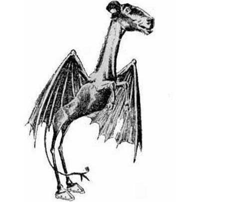 Misteri Jersey Devil, Legenda Monster Terbang Berkepala Kuda mediametafisika.com