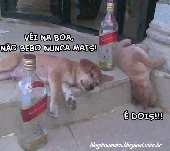 bebo.png (547×488)