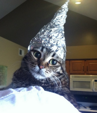 https://en.wikipedia.org/wiki/Tin_foil_hat