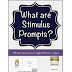 What Are Stimulus Prompts? Or If I Don't Tell Them the Answer, What Other Kinds of Prompts Are There?