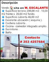 CLASIFICADOS - W. ESCALANTE