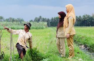 Tenaga Bantuan Penyuluh Pertanian TBPP