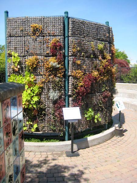 Jardines verticales muros verdes paredes vegetales - Jardines verticales exterior ...