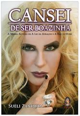 Cansei de Ser Boazinha - Ano 2013 (R$19,90)