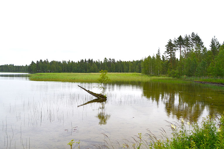 Travel, Finland, Savonranta, forest, vegetation,lake, wooden house, boat