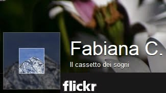Visualizza le mie foto su Flickr