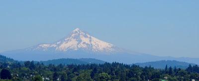 Mt Hood view