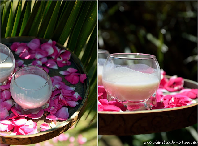 rhum lait de coco Antilles