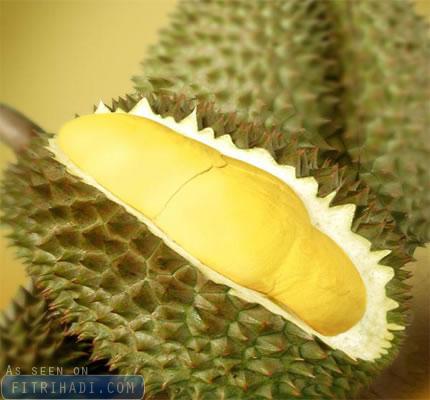 tips cara pilih buah durian terbaik