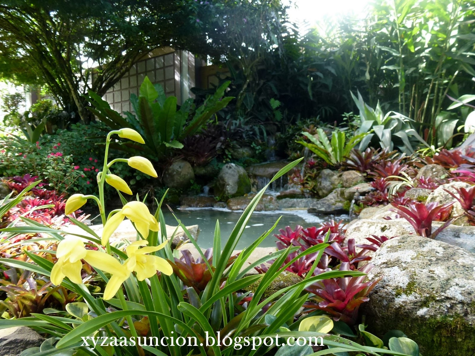 Wanderlust the garden of eden restored for Jardin of eden