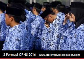Info Terbaru CPNS 2016, Hanya 3 Formasi ini Yang Akan Dibuka pada CPNS 2016 Nanti