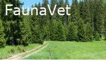 FaunaVet
