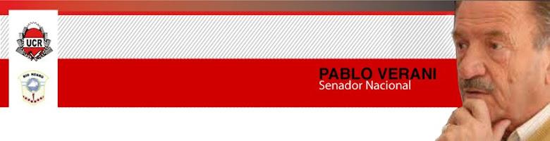Pablo Verani senador nacional