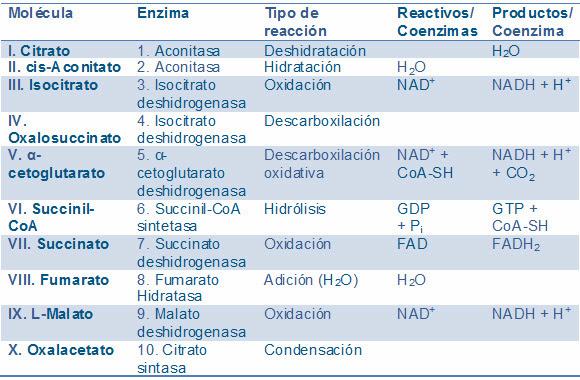 acido urico aumentado en el embarazo medicina para eliminar el acido urico medicamentos para tratar gota