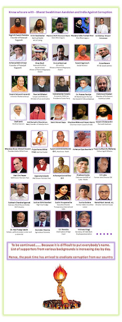 The revolutionaries of 2011