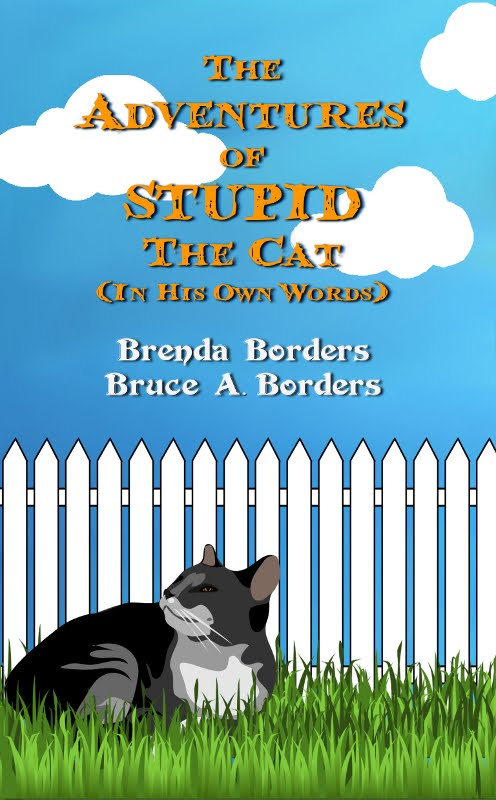 The Adventures Of Stupid The Cat is on Amazon, eBook and Paperback